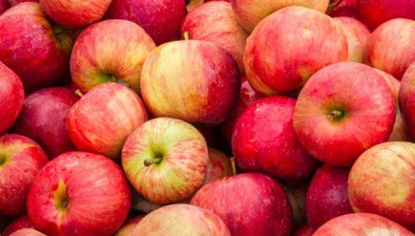 Эти фрукты помогут вам похудеть